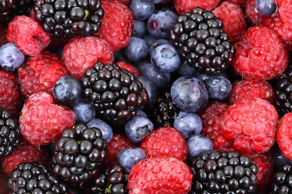 Charlotte aux fruits allégée